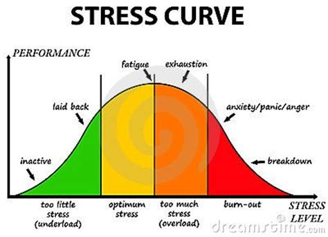 Cause and effects essay stress